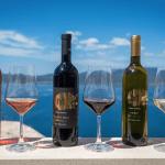 Croatian local wine